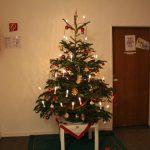 Auch wir hatten einen schönen Weihnachtsbaum im Flur stehen